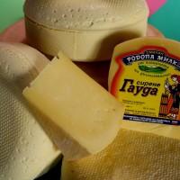 сирене гауда
