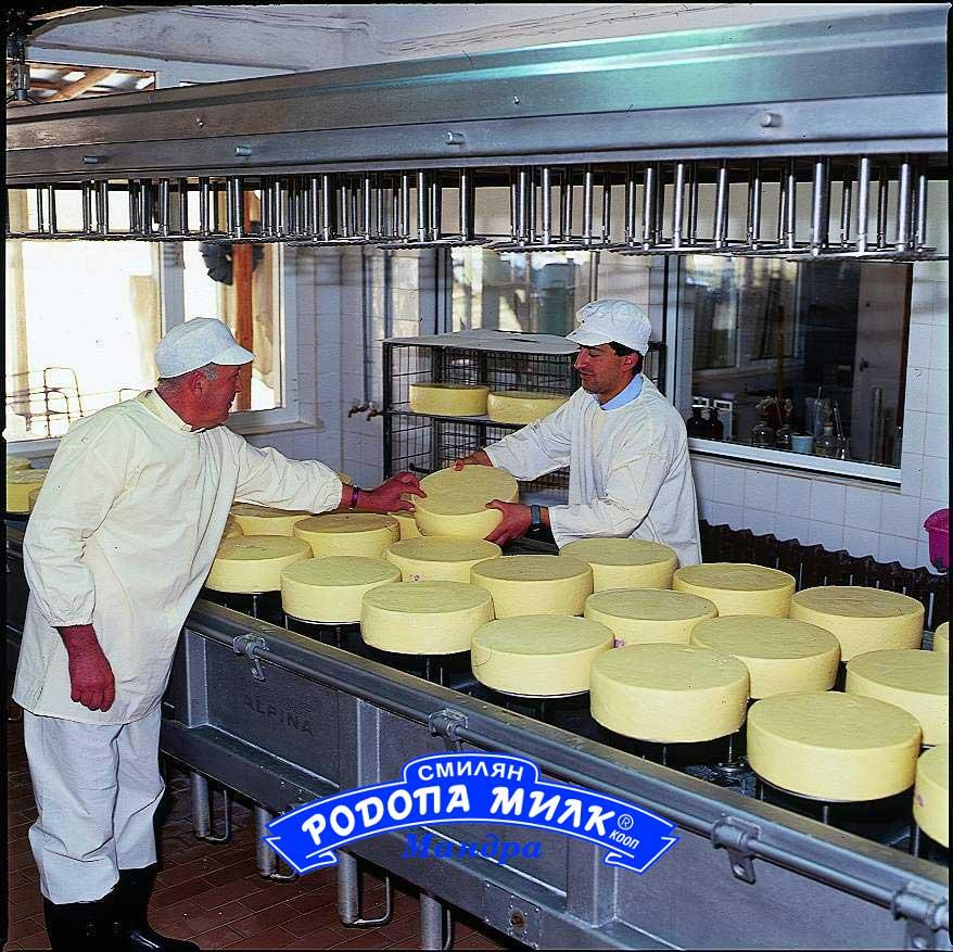 """Rodopa milk"" Dairy"